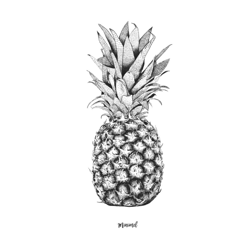 Minimel – Pineapple Poster – A4